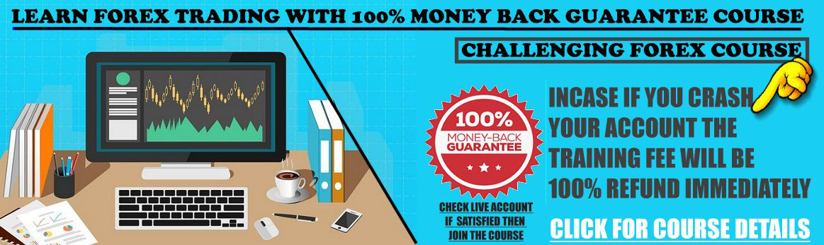 Forex Trading Training Course In Chennai Double Your Investment With